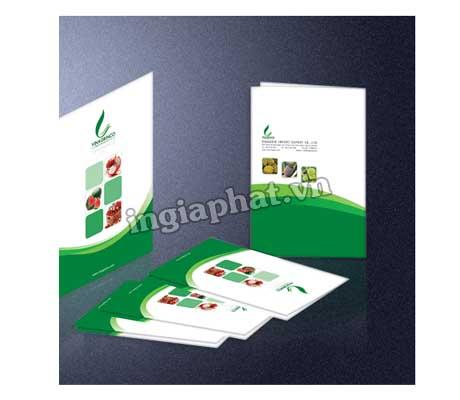 In folder gía rẻ 5| ingiaphat.vn